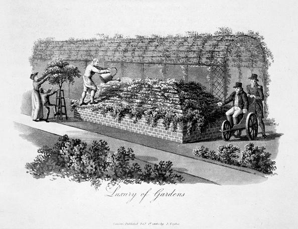 Ornamental Garden「Luxury Of Gardens' 1816」:写真・画像(4)[壁紙.com]