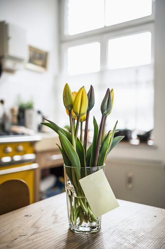 Adhesive Note「Adhesive note gluing at glass with tulips on a kitchen table」:スマホ壁紙(1)