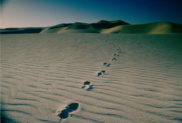 余白「Footprints in the Desert, Qatar」:写真・画像(9)[壁紙.com]