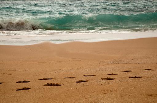 Wave「Footprints on a sandy beach; tide line and waves beyond」:スマホ壁紙(1)