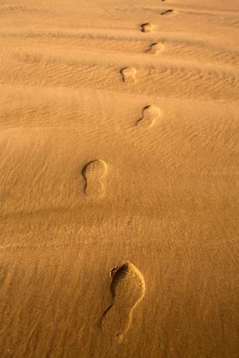 Cannon Beach「Footprints in the sand on the beach.」:スマホ壁紙(17)
