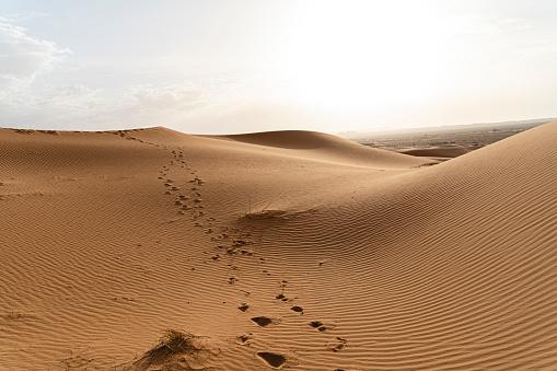 Merzouga「Footprints in sand dunes in Sahara Desert, Merzouga, Morocco」:スマホ壁紙(17)