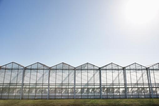 West Sussex「Greenhouses against blue sky」:スマホ壁紙(10)
