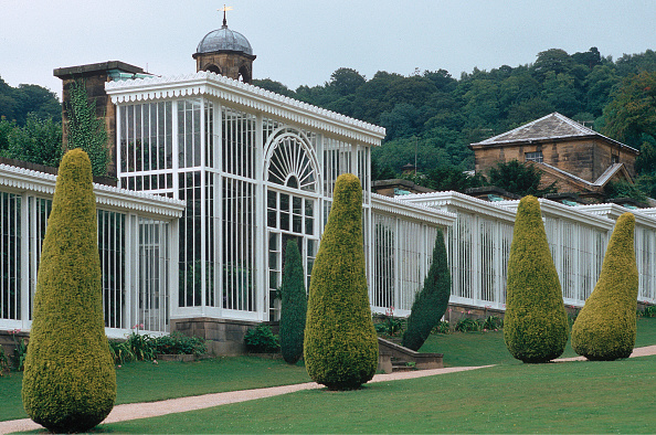 Greenhouse「Greenhouses In The Park At Chatsworth House」:写真・画像(6)[壁紙.com]