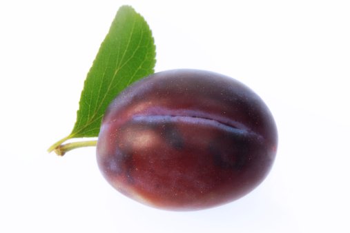 Plum「plum, cut-out, white background」:スマホ壁紙(7)