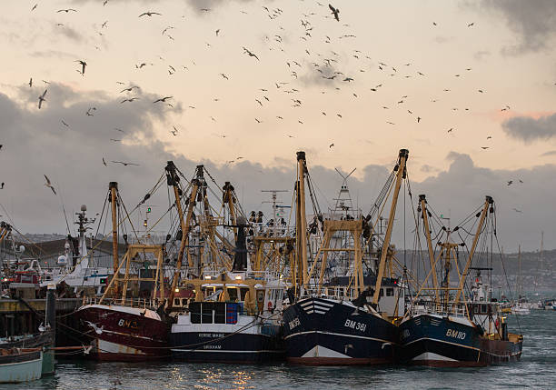 The British Fishing Industry And The European Union:ニュース(壁紙.com)