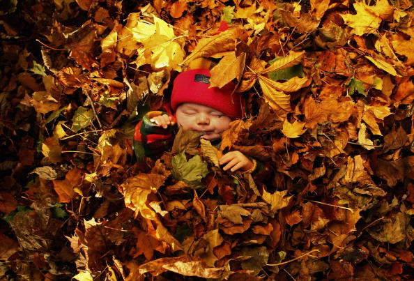 秋「A Hint Of Autumn Finally Arrives In The UK」:写真・画像(6)[壁紙.com]