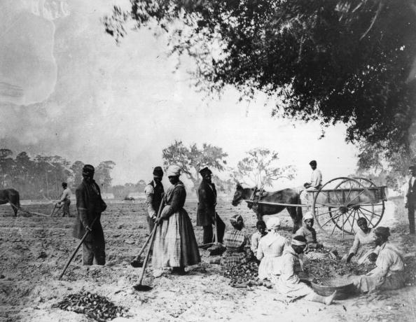 1860-1869「Plantation Workers」:写真・画像(0)[壁紙.com]