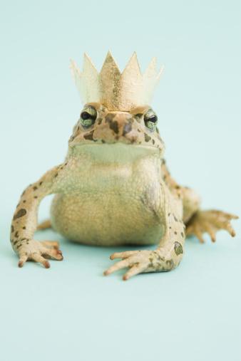 Prince - Royal Person「Frog wearing crown」:スマホ壁紙(5)