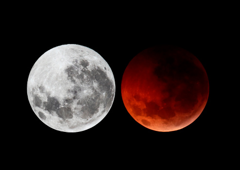 Winter Solstice「A composite image showing the moon before the eclipse and during totality phase.」:スマホ壁紙(17)