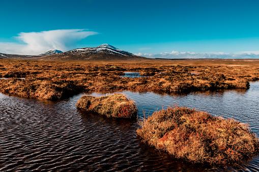 Peat「Flow Country peat bogs at Forsinard, Scotland」:スマホ壁紙(3)