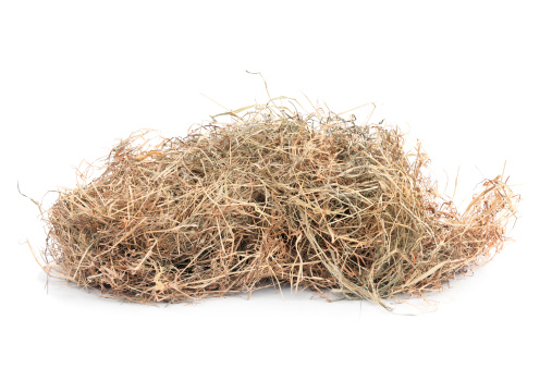 Hay「Meadow hay」:スマホ壁紙(14)