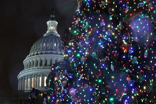 Alex Wong「Capitol Hill Christmas Tree Lighting Ceremony」:写真・画像(17)[壁紙.com]