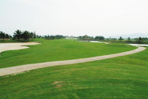 Sand Trap「Pathway on golf course」:スマホ壁紙(11)