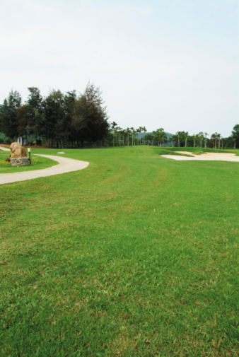 Sand Trap「Pathway on golf course」:スマホ壁紙(5)
