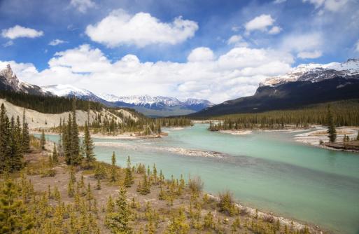 Mt Athabasca「Athabasca river」:スマホ壁紙(4)