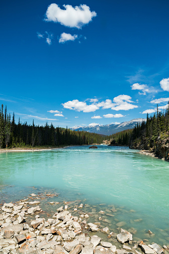 Athabasca River「Athabasca River in the Canadian Rocky Mountains of Jasper National Park, Alberta, Canada」:スマホ壁紙(16)