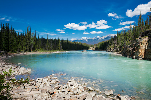 Athabasca River「Athabasca River in the Canadian Rocky Mountains of Jasper National Park, Alberta, Canada」:スマホ壁紙(11)