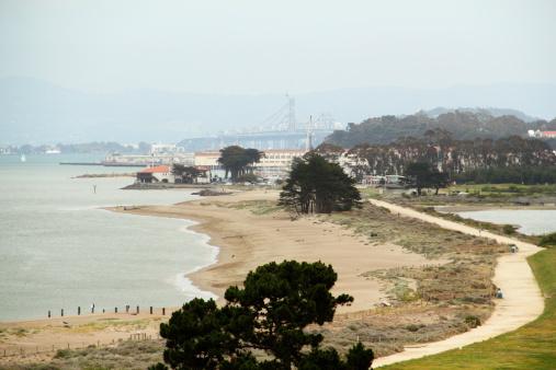 Restoring「Foggy Crissy Field San Francisco」:スマホ壁紙(9)