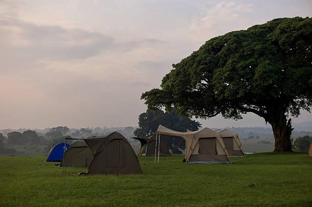 Safari camp at the Ngorongoro crate:スマホ壁紙(壁紙.com)