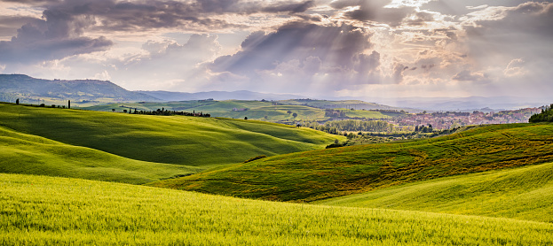 Rolling Landscape「Sunny landscape from Val d'Orcia, Tuscany, Italy」:スマホ壁紙(2)