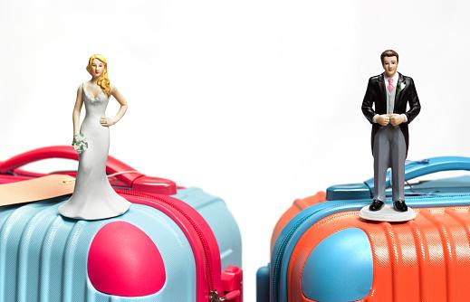 Married「Bride and groom on suitcase」:スマホ壁紙(10)