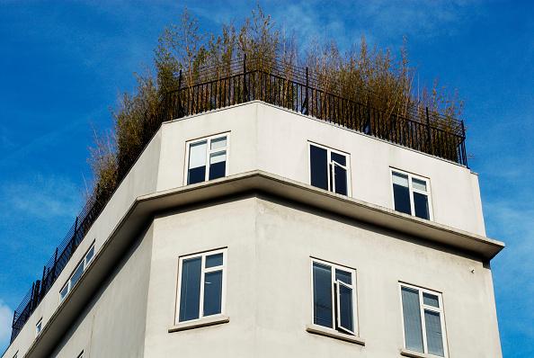 庭園「Rooftop garden, Old Street, London, UK」:写真・画像(8)[壁紙.com]