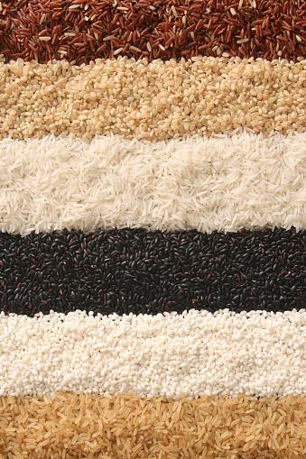 Brown Rice「Rows of rice」:スマホ壁紙(19)