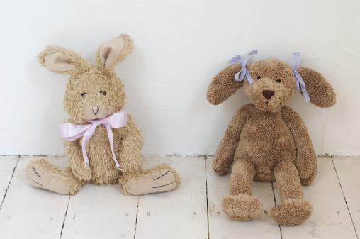 Stuffed Animals「Toy rabbit and toy dog sat against wall」:スマホ壁紙(13)