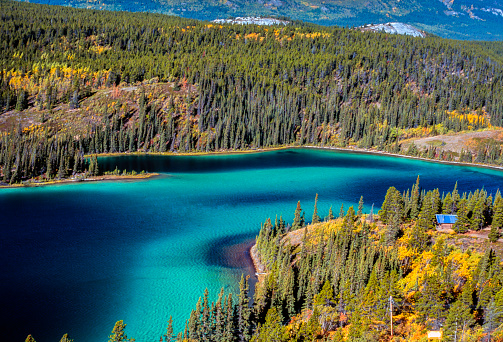 Emerald Lake「Detail of Emerald lake, Yukon, Canada」:スマホ壁紙(1)