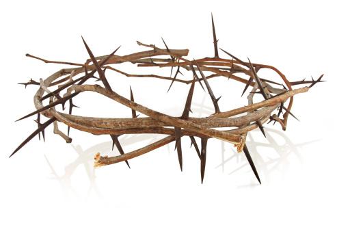 Easter「Crown of Thorns」:スマホ壁紙(0)