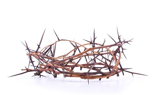 God「Crown of Thorns (XL)」:スマホ壁紙(6)