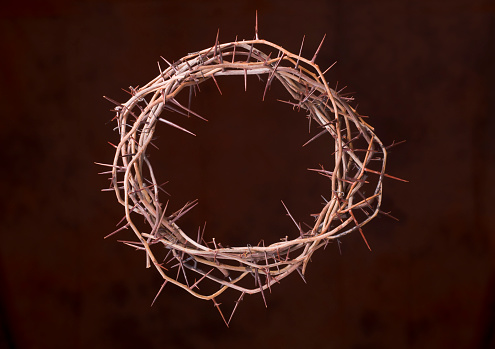 Forgiveness「Crown of Thorns」:スマホ壁紙(18)
