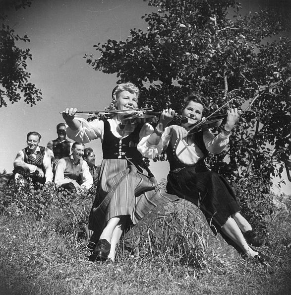 Violin「Finnish Folk」:写真・画像(4)[壁紙.com]