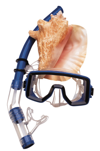 Snorkeling「Snorkeling equipment and conch shell」:スマホ壁紙(13)