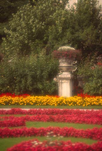 観賞用庭園「Austria, Salzburg, roses in city hall garden」:スマホ壁紙(13)