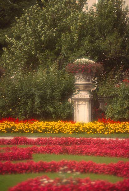 Austria, Salzburg, roses in city hall garden:スマホ壁紙(壁紙.com)