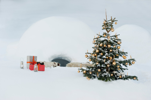 Igloo「Austria, Salzburg County, Christmas tree and presents in snow in front of igloo」:スマホ壁紙(6)