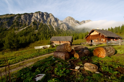 Log「Austria, Salzburg land, mountain pasture」:スマホ壁紙(13)