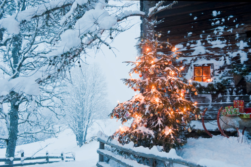Snow sled「Austria, Salzburg Country, Flachau, View of illuminated christmas tree with sleigh in front of alpine hut」:スマホ壁紙(10)