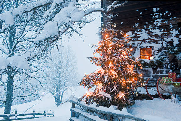 Austria, Salzburg Country, Flachau, View of illuminated christmas tree with sleigh in front of alpine hut:スマホ壁紙(壁紙.com)