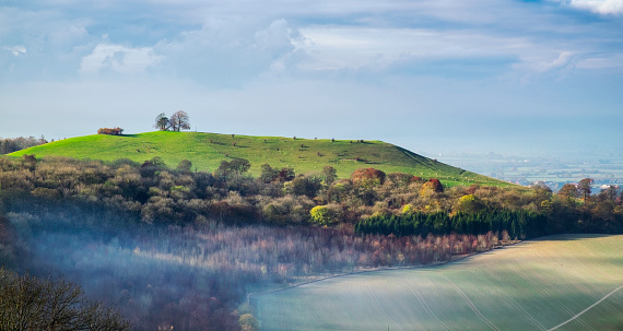 Chiltern Hills「Autumn On Coombe Hill In The Chilterns, Buckinghamshire」:スマホ壁紙(10)