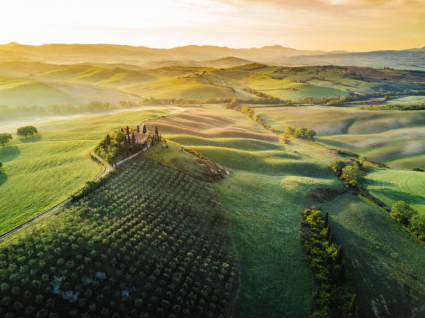 Tuscany's valley in Val d'Orcia at sunrise from aerial point of view:スマホ壁紙(壁紙.com)