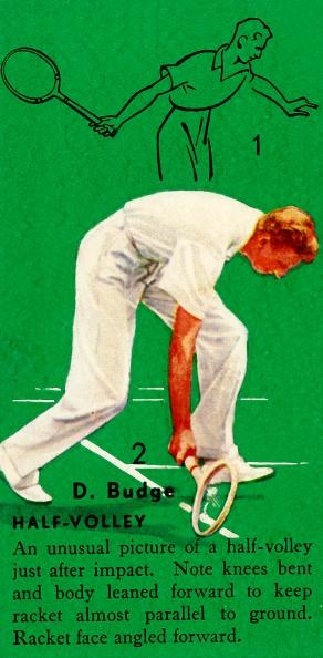 スポーツ用品「D Budge - Half-Volley」:写真・画像(17)[壁紙.com]