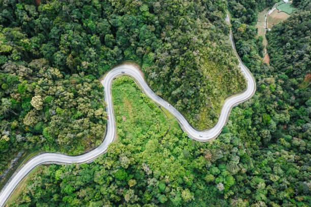 Aerial landscape of winding road in the rainforest:スマホ壁紙(壁紙.com)