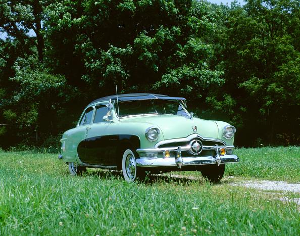 Grass Family「1951 Ford Crestliner」:写真・画像(16)[壁紙.com]