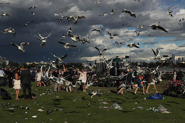 Following - Moving Activity「Revellers Enjoy Melbourne Cup Day Festivities」:写真・画像(7)[壁紙.com]