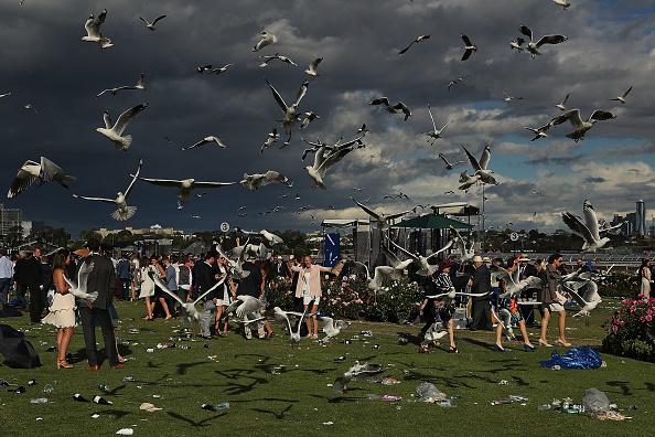 トップランキング「Revellers Enjoy Melbourne Cup Day Festivities」:写真・画像(13)[壁紙.com]