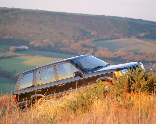 Grass Family「1997 Range Rover 4.0」:写真・画像(12)[壁紙.com]