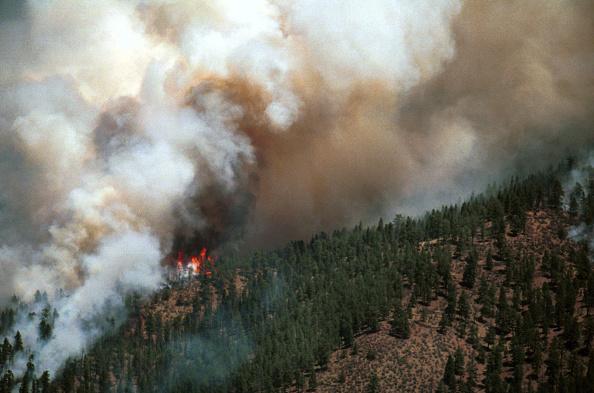 Colorado「Hayman Wildfire in Colorado」:写真・画像(12)[壁紙.com]